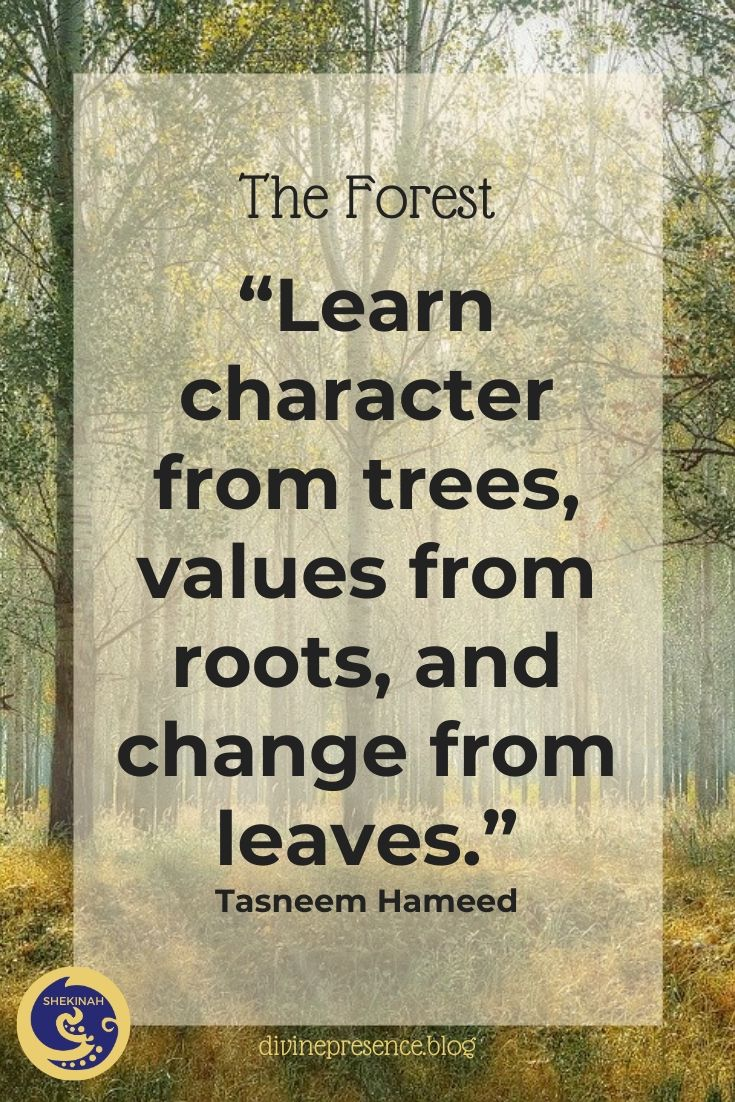 Learn character from trees, values from roots, and change from leaves.