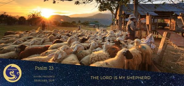 the Lord is my Shepherd, sheep, lambs, shepherds, ewes, sheep are weak, defenseless, foolish, fearful, timid, stupid, flock, follow a leader, wandering aimlessly, valuable, prized possessions, provider, preserver, director, loving them, close to His heart, Jehovah Raah, Creator, Universe, Jehovah Jireh, contentment, provender and peace, rest and refreshment, serenity, satisfaction, goal-oriented, the Peace of God, path to perfection, Holy Spirit