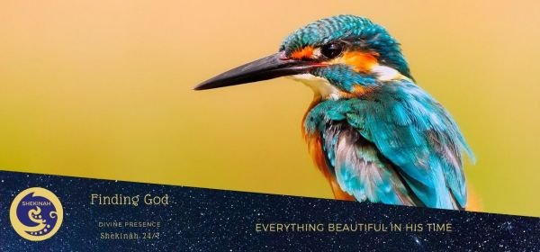 everything beautiful, relationship with God, no Bible, how did Abraham discover God, Pentateuch, Psalms, Isaiah, Jeremiah, gospels, epistles, Muslims, Christians, Jews,infinite all-powerful God, building faith, living, true God, infinite in being, perfection, most pure spirit, invisible, immutable, immense, eternal, most absolute, but one God, no god other than Him, compassionate and merciful, reflect with care, timelessness of God, creation of time, a time for everything, a time to plant, a time to kill, a time to heal, a time to tear down, human heart, be happy, do good