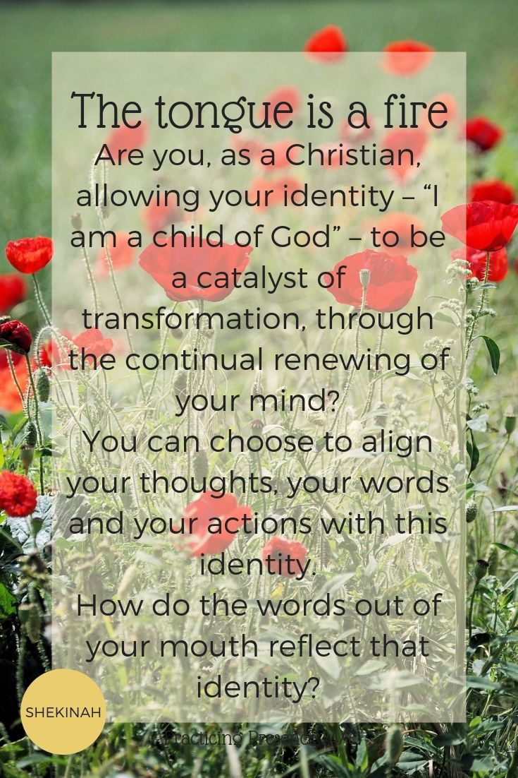 "Are you, as a Christian, allowing your identity – ""I am a child of God"" – to be a catalyst of transformation, through the continual renewing of your mind? You can choose to align your thoughts, your words and your actions with this identity.  How do the words out of your mouth reflect that identity?"