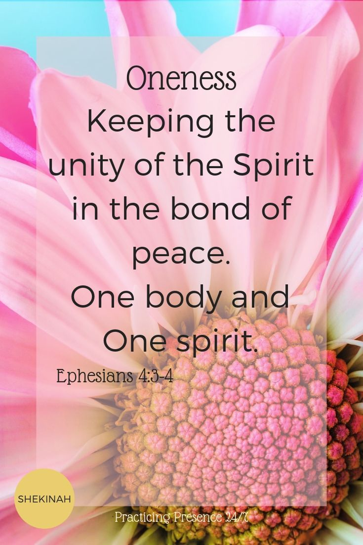 Keeping the unity of the Spirit in the bond of peace.  One body and One spirit.  Ephesians 4:3-4