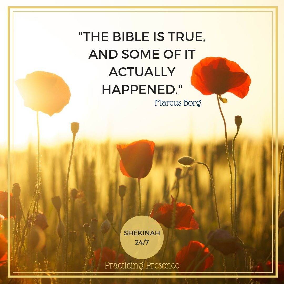 """The Bible is true, and some of it actually happened."" Marcus Borg"