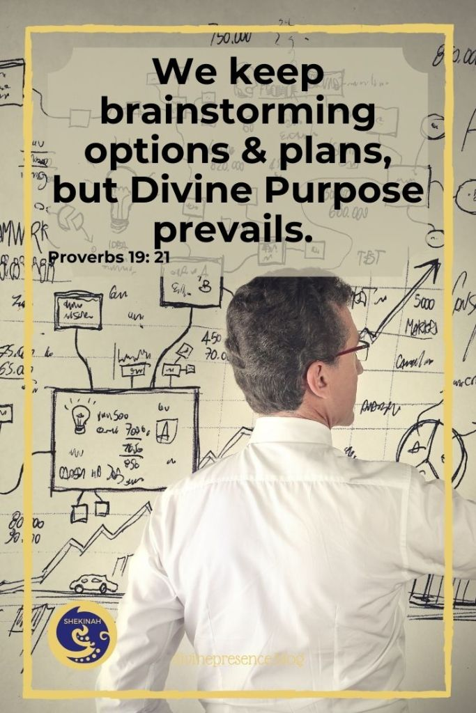 We keep brainstorming options and plans, but Divine Purpose prevails.